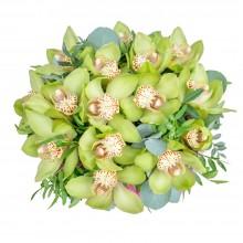 Букет из 15 орхидеЙ Цимбидиум